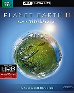 Cover Image for 'Planet Earth II [4K Ultra HD]'