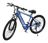Elektron B368 Hybrid Bicycle