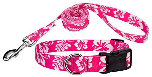 Country Brook Design | Pink Hawaiian Deluxe Dog Collar & Leash - (Hawaiian Dog Collar Collars)
