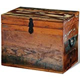 SKB family Reclaimed Solid Wood Storage Box Vintage Wooden Painted Trunk