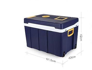 Mini Kühlschrank Für Auto : Lonve l auto kühlschrank carhome dual use studentenwohnheim