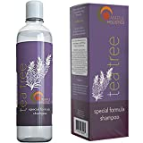 Pure Tea Tree Oil Shampoo - Natural Essential Oil...