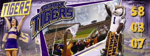 LSU Tigers Louisiana State Sports Wall Mural Wallpaper 4' x 10' by Sport Walls