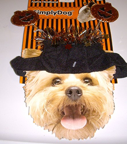 Dog Halloween Costume Pumpkin - 9