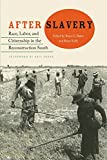 img - for After Slavery: Race, Labor, and Citizenship in the Reconstruction South (New Perspectives on the History of the South) book / textbook / text book