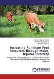 Increasing Ruminant Feed Resources Through Maize-legume Intercrop: Integration Lablab purpureus, Tephrosia bracteolata and Mucuna pruriens into maize to improve the quantity