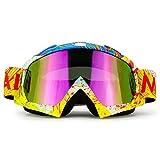 Motorcycle Goggles Dirt Bike ATV Motocross MX Goggles Glasses for Men Women Youth (C95)