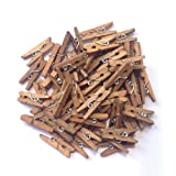 "LWR Crafts Wooden Mini Clothespins 100 Per Pack 1"" 2.5cm (Jacobean)"