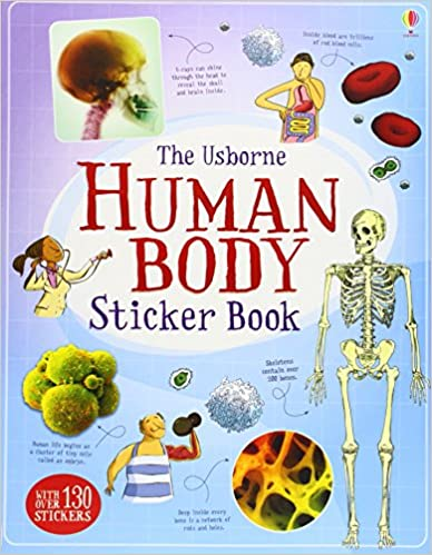 U Torrent Descargar Human Body Sticker Book PDF Español