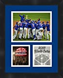 Frames by Mail Chicago Cubs 2016 World Series Collage Framed Photo, 11 x 14