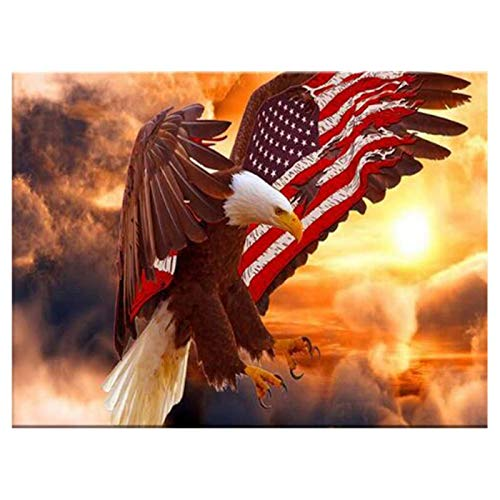 LIPHISFUN Diamond Painting Kits for Adults Full Drill Square Resin Rhinestone Embroidery Unfinished Cross Stitch Home Decor Gift Eagle Flag(30x40cm) ()
