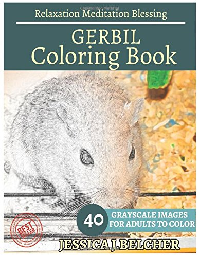 amazon com gerbil coloring book for adults relaxation meditation