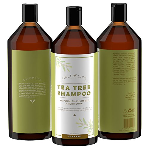 Calily Life Organic Tea Tree Shampoo + Conditioner with Dead Sea Minerals, Duo Set, 33. 8 Oz. Each – Refreshes, Removes Impurities, Softens & Invigorates - Promotes Hair Growth Naturally - (Tea Tree Shampoo)