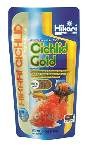 Hikari 3.5-Ounce Sinking Cichlid Gold Pellets for Pets, Mini