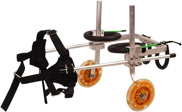 Dog wheelchair Silla de ruedas para perros, entrenamiento de ...