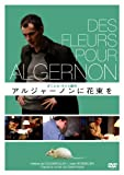 TV Series - Flowers For Algernon [Japan DVD] IVCF-28024