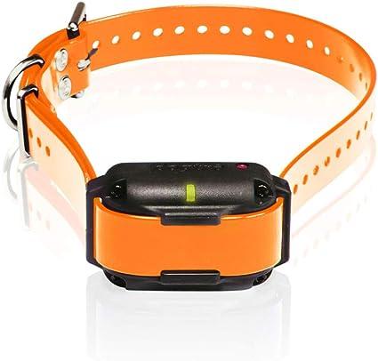 Dogtra ARC Additional Receiver Collar Orange