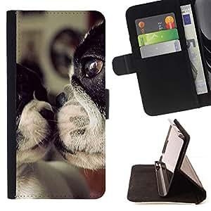 For Apple iPhone 5C Case , Terrier Madre del amor del perro lindo dulce- la tarjeta de Crédito Slots PU Funda de cuero Monedero caso cubierta de piel
