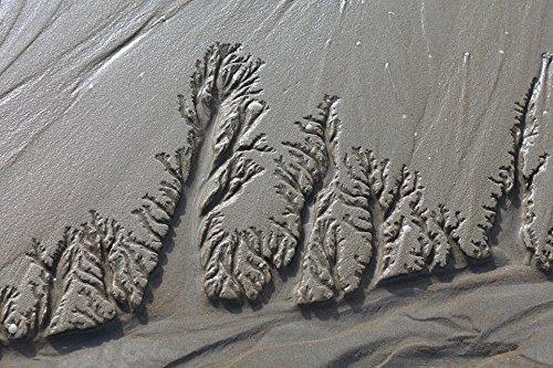 7ab94c225312 Amazon.com: Home Comforts Canvas Print Wadden Sea Holiday Sand ...