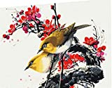 CaptainCrafts New Paint by Number Kits - Birds Flowers 16x20 inch Frameless - Diy Painting by Numbers for Adults Beginner Kids