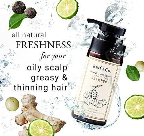 Buy product for oily hair