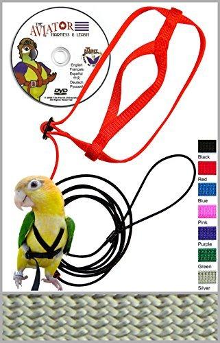 Buy umbrella cockatoo harness