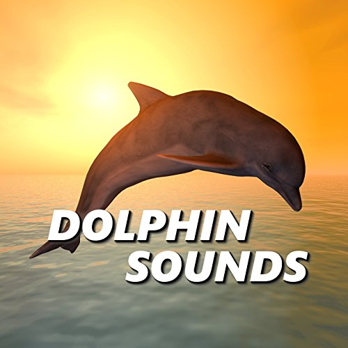 Exotic Dolphin Sounds by Dolphin Sounds on Amazon Music ...