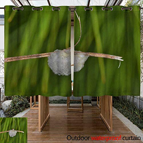 Ashley Clutch (WinfreyDecor Outdoor Curtain for Patio Microgastrinae Braconid wasp Egg Clutch W63 x L72)