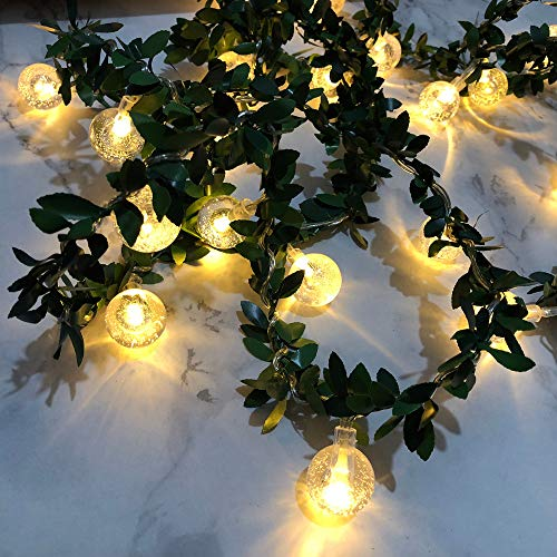 Outdoor Plant Warming Lights in US - 4