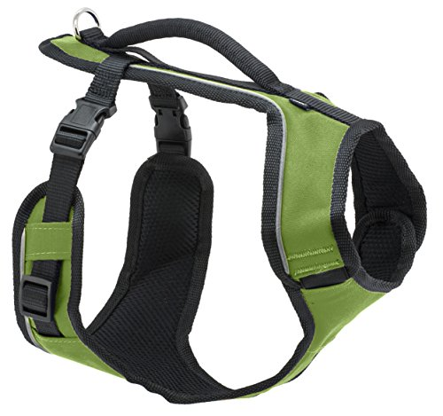 petsafe-x-small-sure-fit-harness-nylon-width-1-2-inch-apple-green