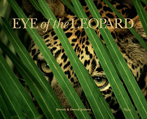 """""""If the eye expresses life and soul and what lives inside, leopards are the eye of Africa, linked through a connective nerve directly to what this continent means and symbolizes."""" —Dereck Joubert National Geographic filmmakers Dereck and Beverly Joub..."""