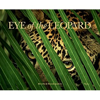 Eye of the Leopard