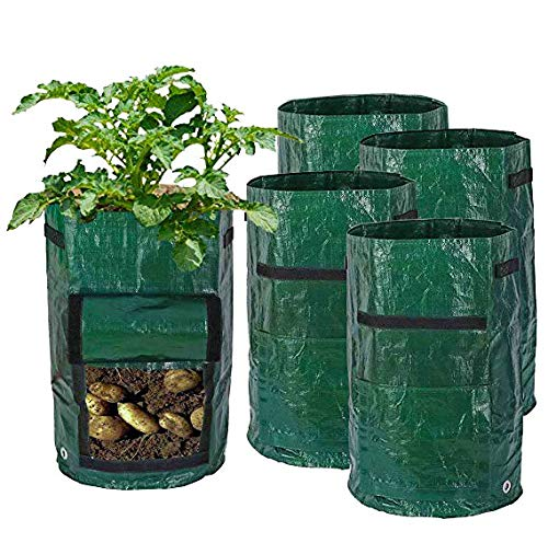 Sides Potatoes - 5 Pack 10 Gallon Extra Thick Garden Potato Grow Bags with Flap and Sturdy Handles and Ventilated Holes on The Bottom and Side Heavy Duty Suitable for Potato, Carrot, Tomato, Onion, Flowers and etc