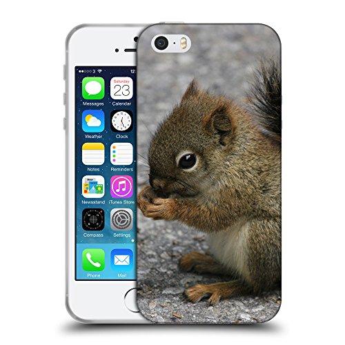Just Phone Cases Coque de Protection TPU Silicone Case pour // V00004145 Mignon petit animal d'écureuil // Apple iPhone 5 5S 5G SE