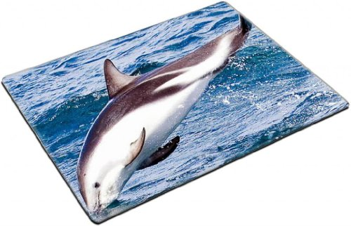 Dolphin Dive Ocean Marine Life Alone Blue Waves Animal Placemat Pads Customized Made To Order Support Ready 15 6/8 Inch (400mm) X 11 13/16 Inch (300mm) X 1/8 Inch (3mm) High Quality Eco Friendly Cloth With Neoprene Rubber Lux Place Mouse Pad Desktop Mousepad Laptop Mousepads Comfortable Table Desk Kitchen Computer Mouse Mat Cute Gaming Mouse_Pad