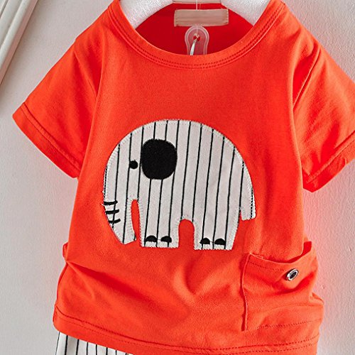 Malloom® Neugeborenen Baby Cartoon Elefant T-shirt Tops Hosen Outfits Kleidung Sets Orange