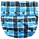 Happy Endings Teen/Adult Stain Resistant Snap Closure Reusable Cloth Diaper Incontinence - Blue Plaid