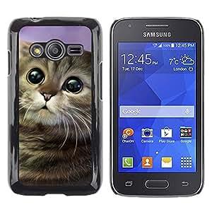 TopCaseStore / la caja del caucho duro de la cubierta de protección de la piel - Art Cartoon Cat Longhair Drawing Mongrel - Samsung Galaxy Ace 4 G313 SM-G313F