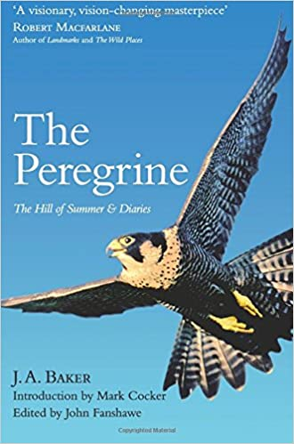 The Peregrine He Hill Of Summer Diaries J A Baker Amazonco