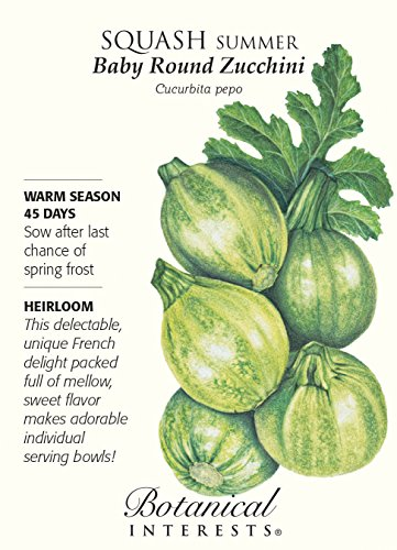 Blossom Vegetable Bowl - Vegetable Seeds - 3 grams Seeds of Baby Round Zucchini Summer Squash Seeds - Botanical Interests