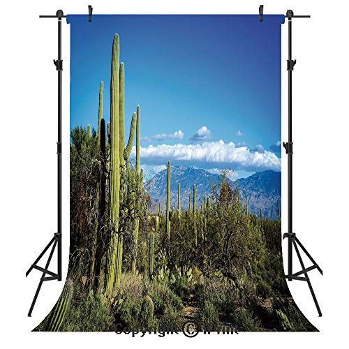 (Desert Photography Backdrops,Wide View of The Tucson Countryside with Cacti Rural Wild Landscape Arizona Phoenix,Birthday Party Seamless Photo Studio Booth Background Banner 6x9ft,Green)