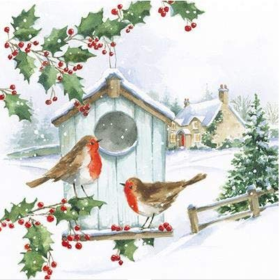 Pack of 6 Christmas Robins Charity Christmas Cards Supports Multiple Charities (Christmas Robin Charity Cards)