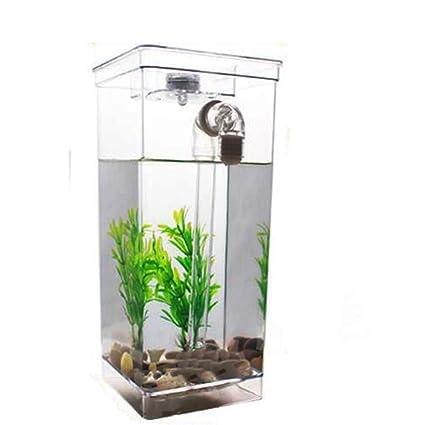 D@Qyy Mini Tanque De Plástico para Escritorio Ecologías Creativas: Pequeños Cambios Mágicos En
