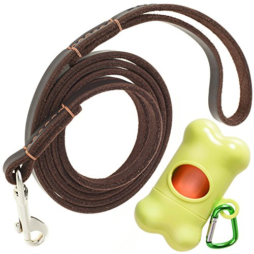 ADITYNA Leather Dog Leash 6 foot x 1/2 inch - Leather Leash for Small Dogs - Perfect for Walking and Training - Heavy Duty Dog Leash Leather (Brown) by ADITYNA