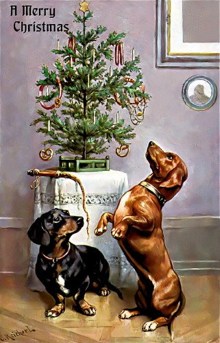 Naughty Dachshund Dogs~Sausage on Christmas Tree~6 pack NEW Matte Vintage Picture Large Blank Note Cards with Envelopes