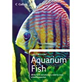 Collins Need to Know? - Aquarium Fish by Don Harper (2006-05-02)