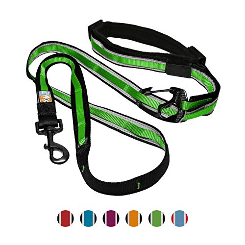 (Kurgo 6 In 1 Quantum Dog Leash | Multi-Functional Hands Free Leash for Dogs | Reflective & Adjustable 6' Lead | Dog Waist Running Belt | Padded Handle | for Training, Hiking, Or Jogging | Grass Green)
