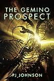 The Gemino Prospect