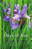Days of Awe, Steven Schnur, 059533248X