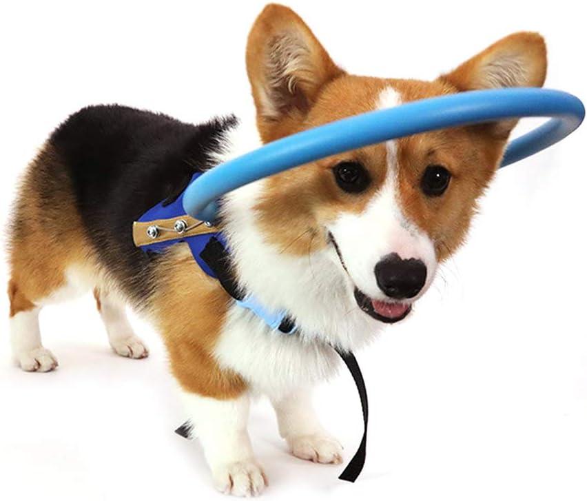 Pssopp Dispositivo para la guía del arnés del Perro Ciego Mascotas seguras Anticolisión Collar del Collar Catarata Guía del círculo Protector del Animal para discapacitados visuales (M)